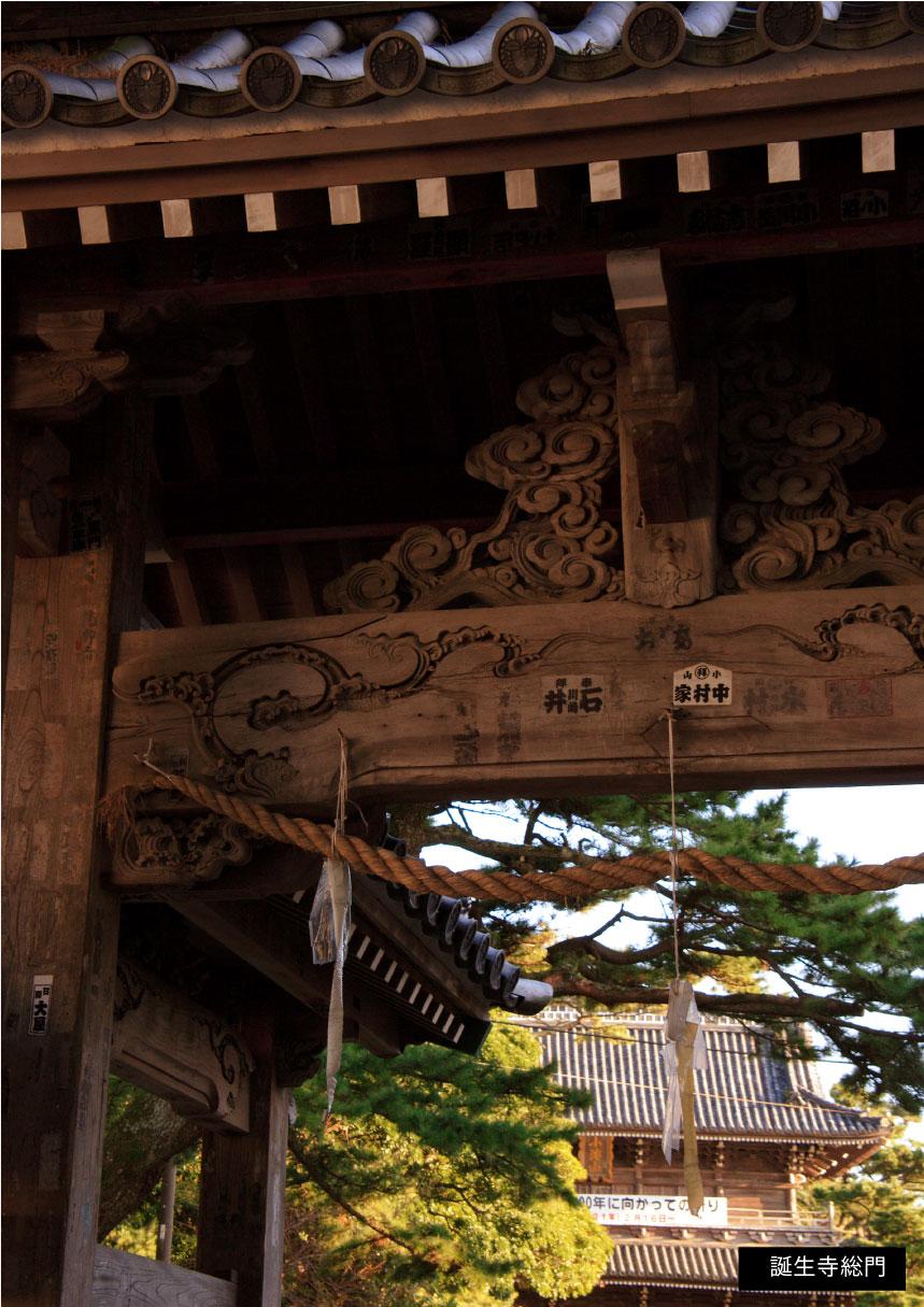 誕生寺総門