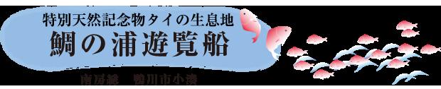 鯛ノ浦遊覧船(鴨川市小湊)