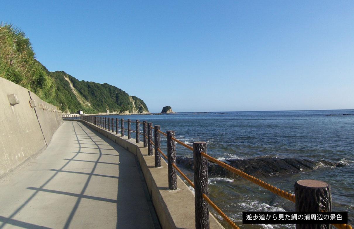 遊歩道から見た鯛の浦周辺の景色
