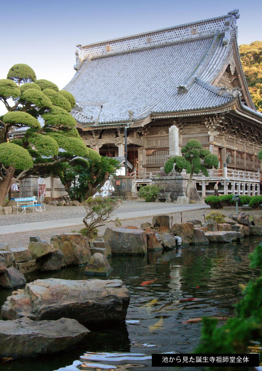 池から見た誕生寺祖師堂全体