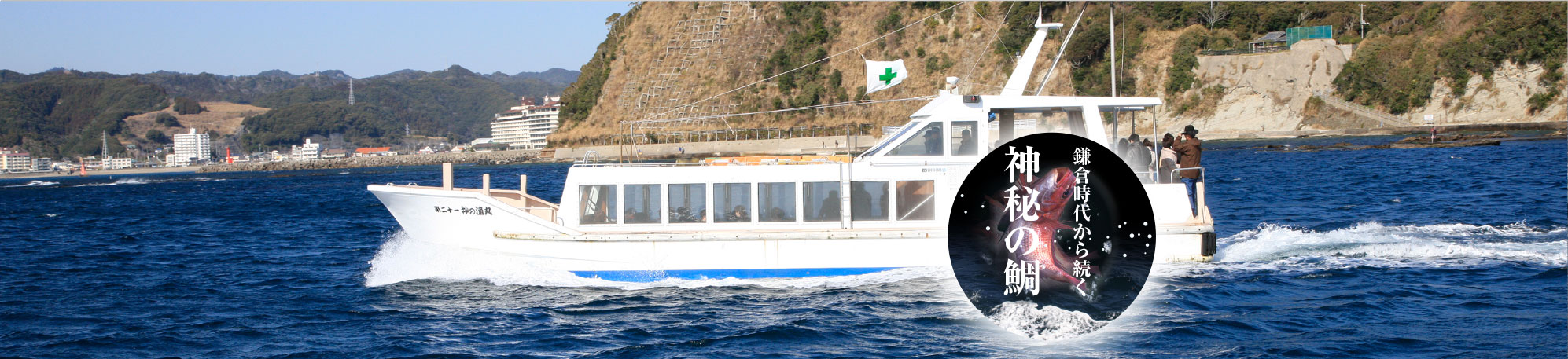 遊覧船で鯛を見よう